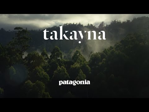 takayna | What If Running Could Save a Rainforest?